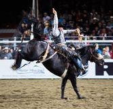 Bucking Rodeo Horse. Rodeo competition in Armstrong, British Columbia, Canada Royalty Free Stock Photos