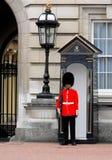 buckingham卫兵伦敦宫殿女王/王后s 库存照片