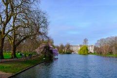 Buckingham Palace obraz royalty free