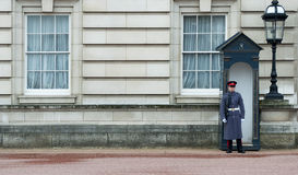 Buckingham palace guardsman Royalty Free Stock Images
