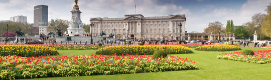 Buckingham Palace panoramic in spring. Panoramic picture of Buckingham Palace with crowed of visitors in spring time Stock Image