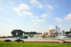 Buckingham springbrunn Grant Park Chicago, USA Arkivfoton