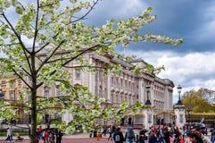 Buckinghampaleis in de lente, Londen, het UK stock afbeelding