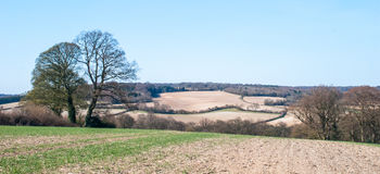 Buckinghamshire Countryside. Landscape view of Chilterns and Buckinghamshire Stock Photography