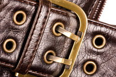 Free Buckle Stock Photography - 10539042