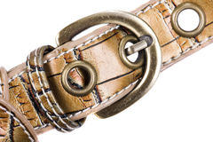 Buckle Royalty Free Stock Image