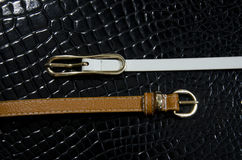 Buckle and belt Stock Images