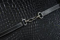 Buckle and belt Royalty Free Stock Image