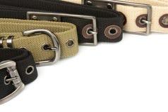 Buckle Belt Background Royalty Free Stock Image