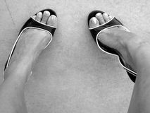 Buckle My Shoe. Black and white heels in black and white royalty free stock photo