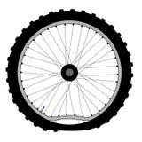 Buckled Bicycle Wheel Stock Image