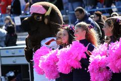 Bucknell Bison cheerleaders Royalty Free Stock Images