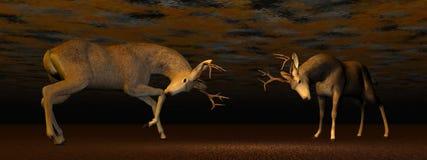 Bucks fighting - 3D render. Fallow buck deer fighting one another in brown background light Stock Photos