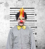 Bucks Party Gone Wrong. Bucko The Soon To Be Married Clown Looks Very Unhappy During A Funny Police Identification Photo After A Bucks Party Gone Wrong stock images