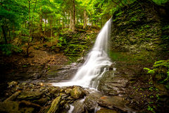 Bucktail Waterfall in Upstate New York Stock Photos