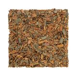 Buckthorn Bark Herb. Used in alternative herbal medicine to treat skin disorders, parasites, gallstones and has laxative properties  on white background Stock Photography