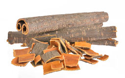 Buckthorn bark, Rhamnus frangula Stock Photos