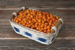 Buckthorn in the basket Royalty Free Stock Photography