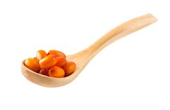 Buckthorn berries in a wooden spoon Stock Images
