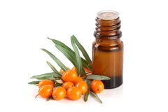Buckthorn olej z jagodami i liśćmi odizolowywającymi na białym tle Zdjęcia Royalty Free