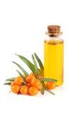 Buckthorn olej z jagodami i liśćmi odizolowywającymi na białym tle Obrazy Royalty Free