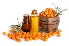 Buckthorn olej z jagodami i liśćmi odizolowywającymi na białym tle Obraz Stock