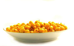 Buckthorn in the saucer Stock Image