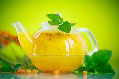 Buckthorn tea Royalty Free Stock Photo