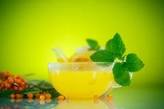 Buckthorn tea stock image