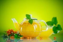 Buckthorn tea Stock Photography