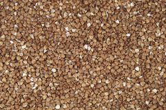 Buckwheat Royalty Free Stock Photos