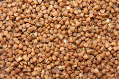 Buckwheat. Close up of buckwheat cereals for background usage Stock Photo