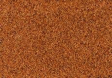 Buckwheat.  Royalty Free Stock Photo