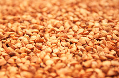 Buckwheat. Grains as a background Stock Photo