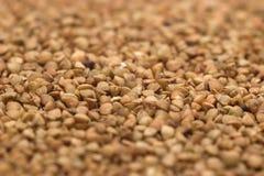 Buckwheat. Porridge, texture for background Stock Photography