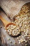 Buckwheat. Closeup of buckwheat in wooden spoon royalty free stock photography