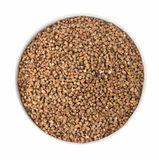 Buckwheat. On white isolated background Royalty Free Stock Photos