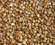 Free Buckwheat Royalty Free Stock Photo - 763945