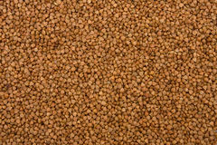 Buckwheat. The close-up of buckwheat background stock photography
