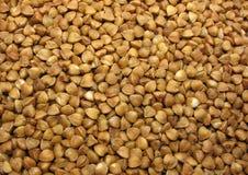 Free Buckwheat Stock Images - 9012744