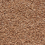 Buckwheat as background. Buckwheat as a brown background royalty free stock photos