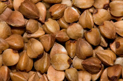 Buckwheat background. Buckwheat brown  background, close-up, cooking ingredients Stock Photos