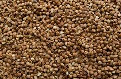 Buckwheat background. Close-up of buckwheat background Stock Photos