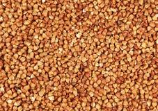 Buckwheat background, close up, beautiful Royalty Free Stock Photo