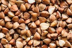 Buckwheat Background, Texture. Healthy Food. Royalty Free Stock Photos