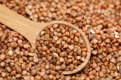 Buckwheat Stock Images