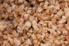 Buckwheat boiled Stock Images
