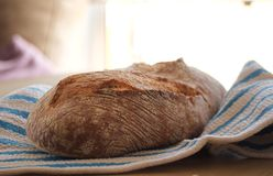 Buckwheat bread handmade stock photography