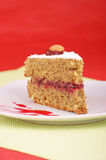 Buckwheat cake. A piece of buckwheat cake on a white plate. Studio shot over red background. Selective focus. Extremely shallow DOF Royalty Free Stock Photo