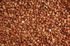 Buckwheat cereals background. vegetarian food Stock Photo